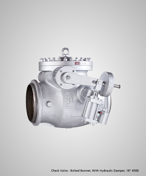 Check-Valve---Bolted-Bonnet,-With-Hydraulic-Damper,-18--300.jpg