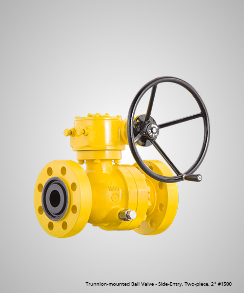 Trunnion-mounted-Ball-Valve---Side-Entry,-Two-piece,-2--1500.jpg