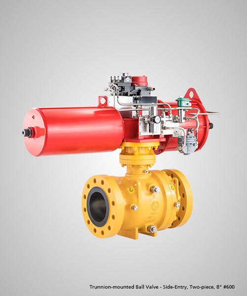 Trunnion-mounted-Ball-Valve---Side-Entry,-Two-piece,-8--600.jpg