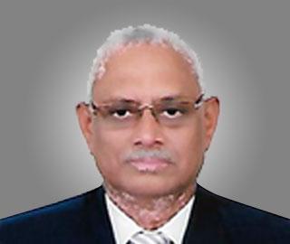 V.L. Patankar
